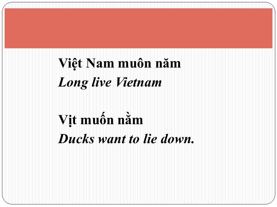 Vit Nam muôn năm Long live Vietnam Vt mun nm Ducks want to lie down.