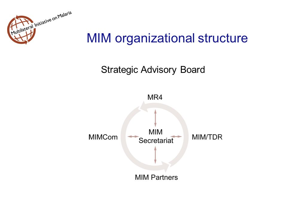 MIM organizational structure Strategic Advisory Board