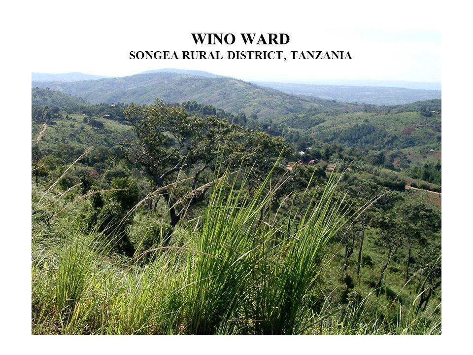 WINO WARD SONGEA RURAL DISTRICT, TANZANIA