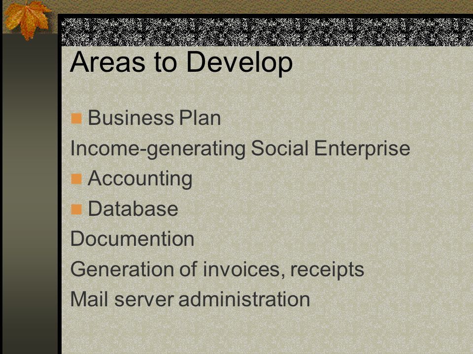 Areas to Develop Business Plan Income-generating Social Enterprise Accounting Database Documention Generation of invoices, receipts Mail server admini