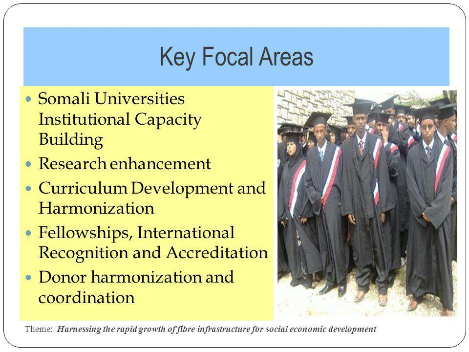 Key Focal Areas Theme: Harnessing the rapid growth of fibre infrastructure for social economic development 10 Somali Universities Institutional Capacity Building Research enhancement Curriculum Development and Harmonization Fellowships, International Recognition and Accreditation Donor harmonization and coordination