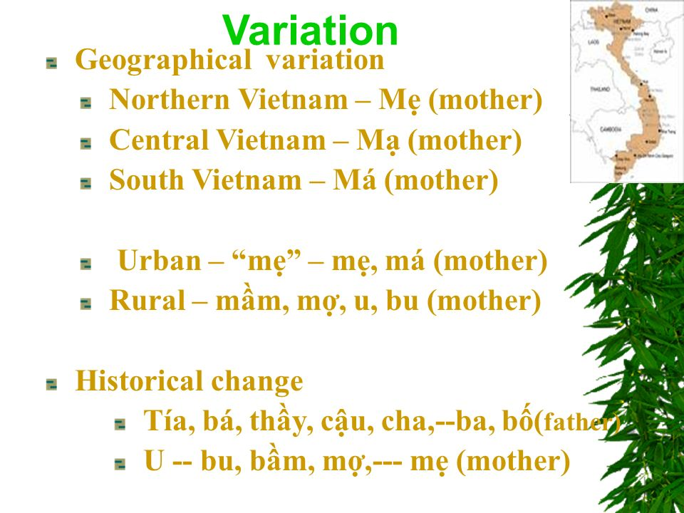 Geographical variation Northern Vietnam – M (mother) Central Vietnam – M (mother) South Vietnam – Má (mother) Urban – m – m, má (mother) Rural – mm, m, u, bu (mother) Historical change Tía, bá, thy, cu, cha,--ba, b( father) U -- bu, bm, m,--- m (mother) Variation