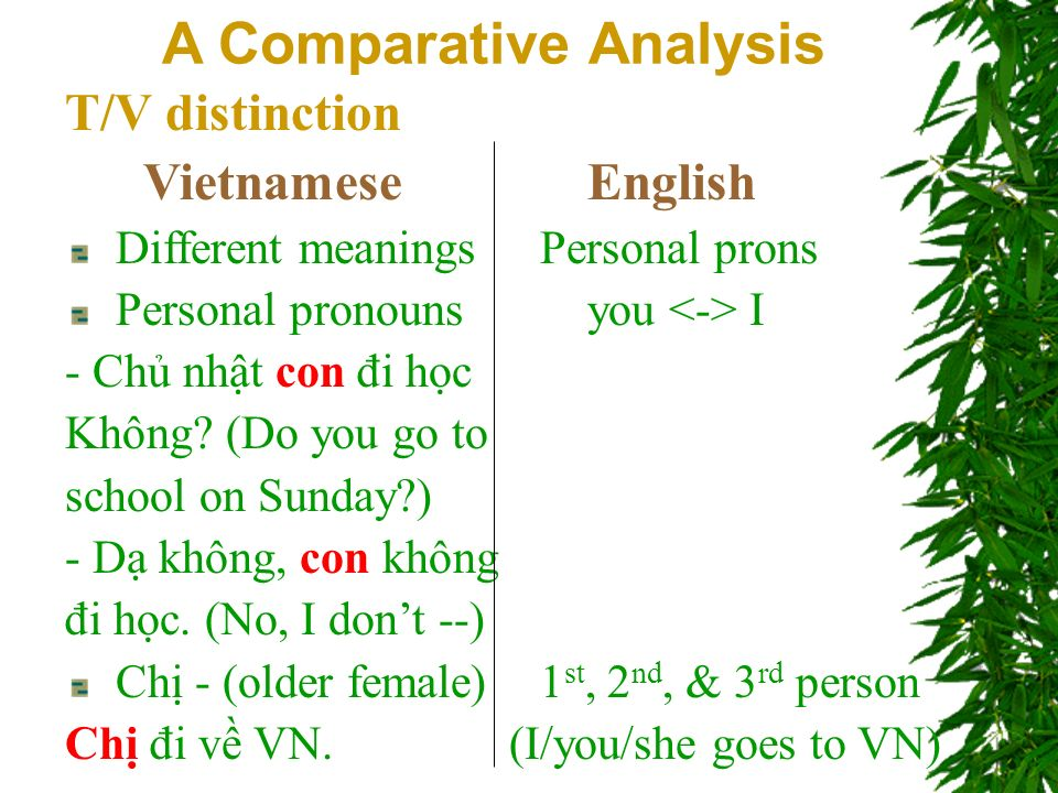 T/V distinction Vietnamese English Different meaningsPersonal prons Personal pronouns you I - Ch nht con đi hc Không.