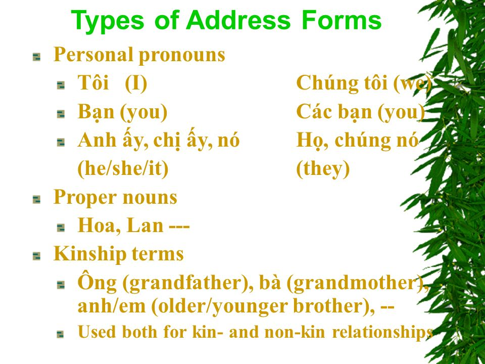 Personal pronouns Tôi (I)Chúng tôi (we) Bn (you)Các bn (you) Anh y, ch y, nóH, chúng nó (he/she/it)(they) Proper nouns Hoa, Lan --- Kinship terms Ông (grandfather), bà (grandmother), anh/em (older/younger brother), -- Used both for kin- and non-kin relationships Types of Address Forms