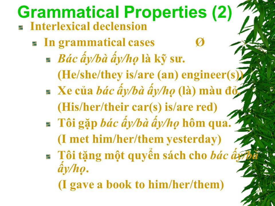 Interlexical declension In grammatical cases Ø Bác y/bà y/h là k sư.