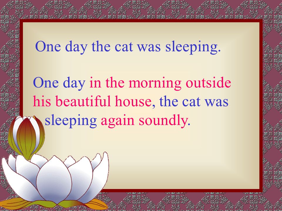 The mouse and the cat -- tell a story vividly