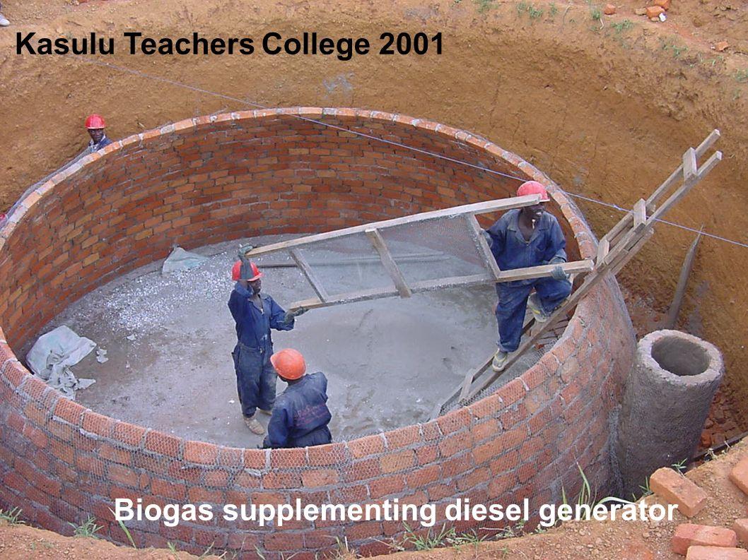 Biogas supplementing diesel generator