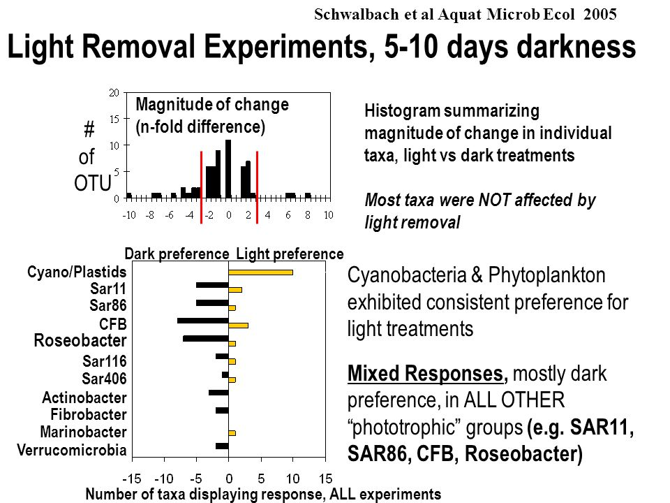 Light Removal Experiments, 5-10 days darkness Histogram summarizing magnitude of change in individual taxa, light vs dark treatments Most taxa were NO