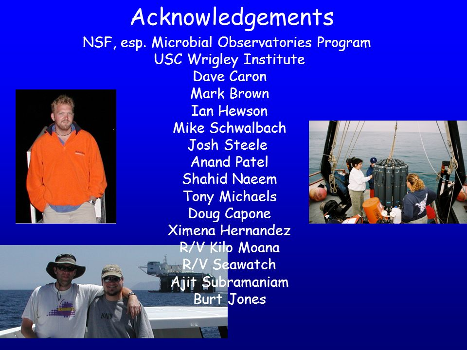Acknowledgements NSF, esp. Microbial Observatories Program USC Wrigley Institute Dave Caron Mark Brown Ian Hewson Mike Schwalbach Josh Steele Anand Pa