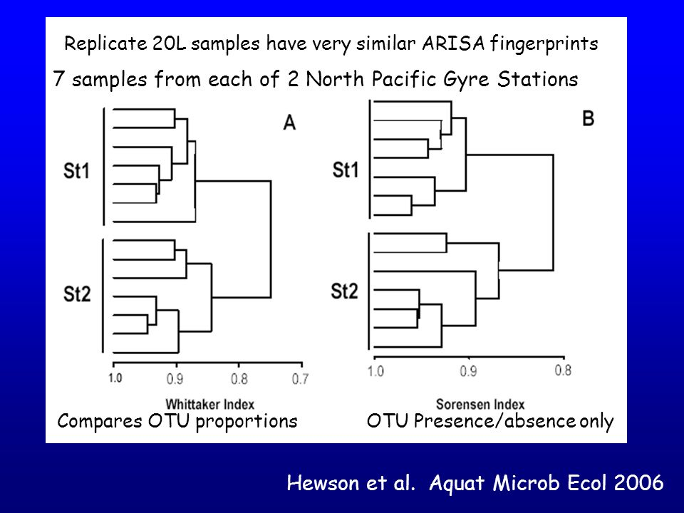 Quantitation Issues/Problems PCR Clone Libraries – Copy number bias mentioned yesterday.