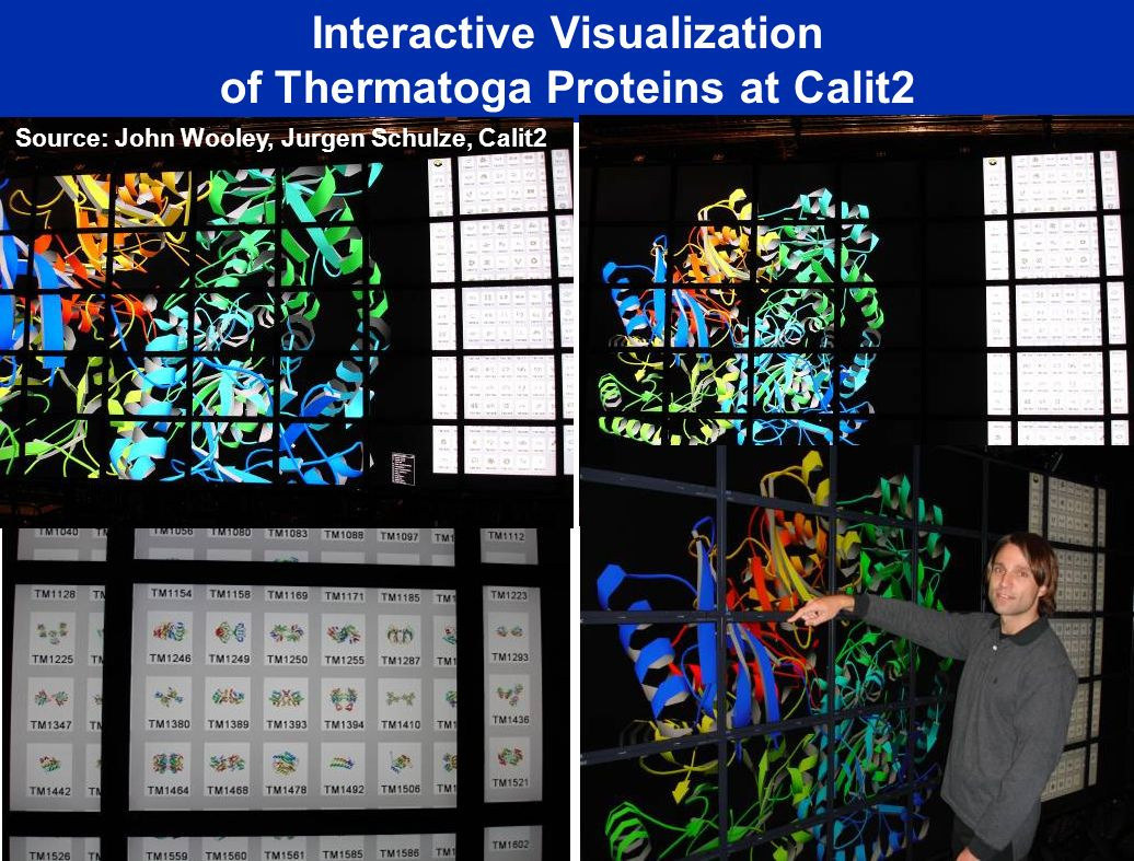 Interactive Visualization of Thermatoga Proteins at Calit2 Source: John Wooley, Jurgen Schulze, Calit2