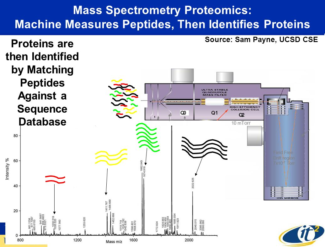 Mass Spectrometry Proteomics: Machine Measures Peptides, Then Identifies Proteins Proteins are then Identified by Matching Peptides Against a Sequence Database Source: Sam Payne, UCSD CSE