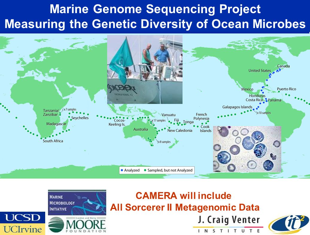 Marine Genome Sequencing Project Measuring the Genetic Diversity of Ocean Microbes CAMERA will include All Sorcerer II Metagenomic Data