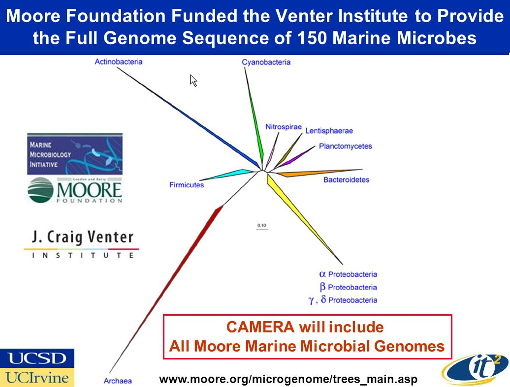 Moore Foundation Funded the Venter Institute to Provide the Full Genome Sequence of 150 Marine Microbes   CAMERA will include All Moore Marine Microbial Genomes