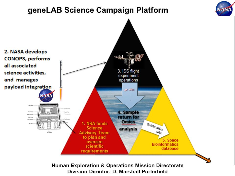 geneLAB Science Campaign Platform Human Exploration & Operations Mission Directorate Division Director: D. Marshall Porterfield