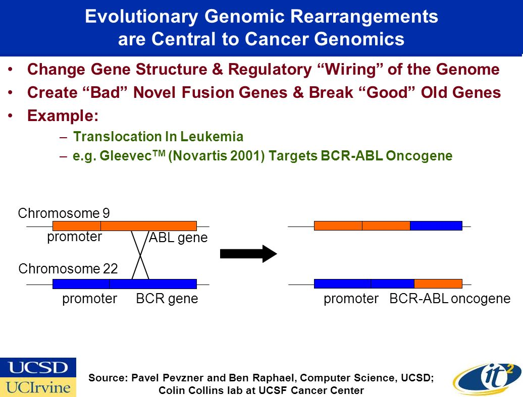 Evolutionary Genomic Rearrangements are Central to Cancer Genomics Change Gene Structure & Regulatory Wiring of the Genome Create Bad Novel Fusion Genes & Break Good Old Genes Example: –Translocation In Leukemia –e.g.