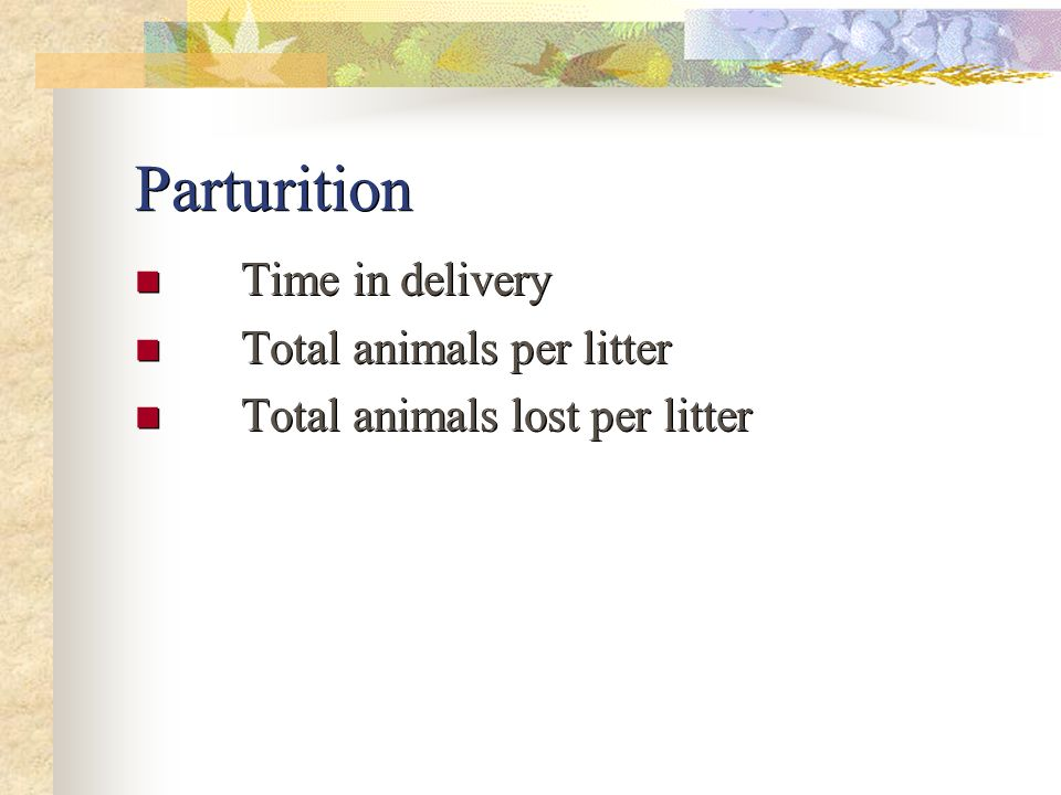 Parturition Time in delivery Total animals per litter Total animals lost per litter Time in delivery Total animals per litter Total animals lost per l