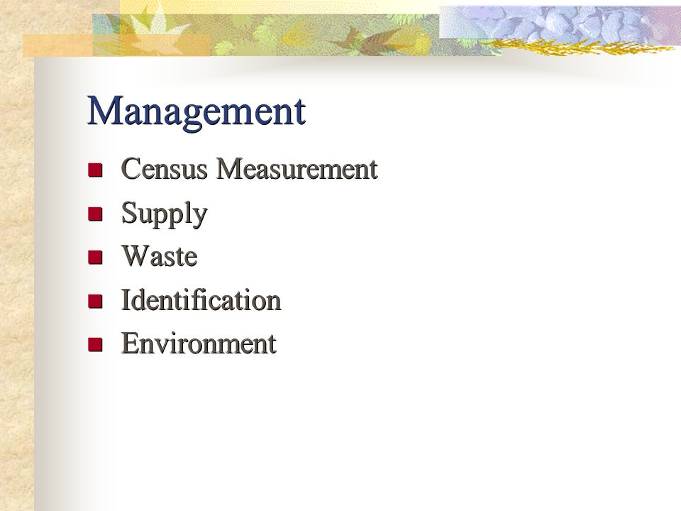 Management Census Measurement Supply Waste Identification Environment Census Measurement Supply Waste Identification Environment