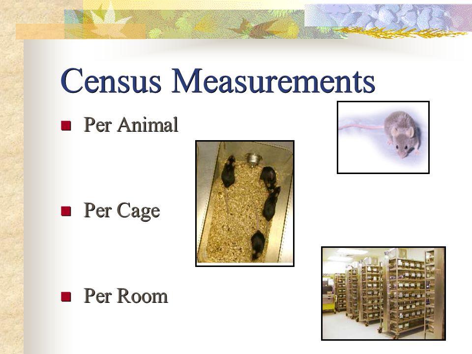 Census Measurements Per Animal Per Cage Per Room Per Animal Per Cage Per Room