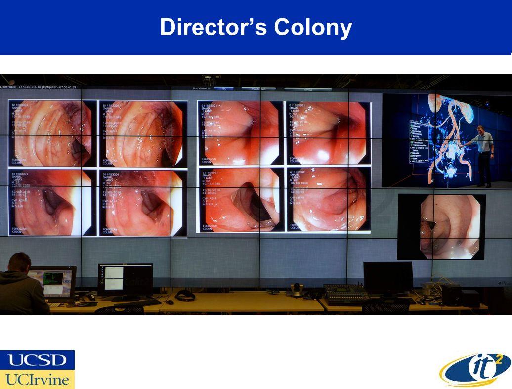 Directors Colony