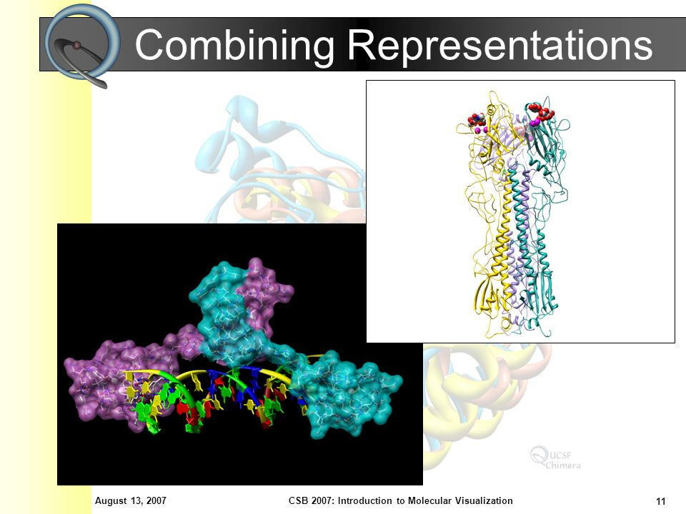 August 13, 2007 11 CSB 2007: Introduction to Molecular Visualization Combining Representations