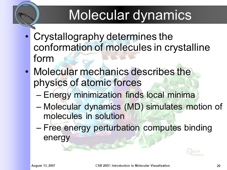 August 13, 2007 20 CSB 2007: Introduction to Molecular Visualization Molecular dynamics Crystallography determines the conformation of molecules in crystalline form Molecular mechanics describes the physics of atomic forces –Energy minimization finds local minima –Molecular dynamics (MD) simulates motion of molecules in solution –Free energy perturbation computes binding energy