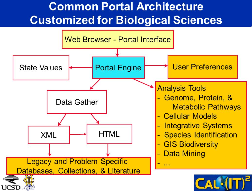 Web Browser - Portal Interface Portal Engine User Preferences State Values Data Gather XML HTML Legacy and Problem Specific Databases, Collections, &