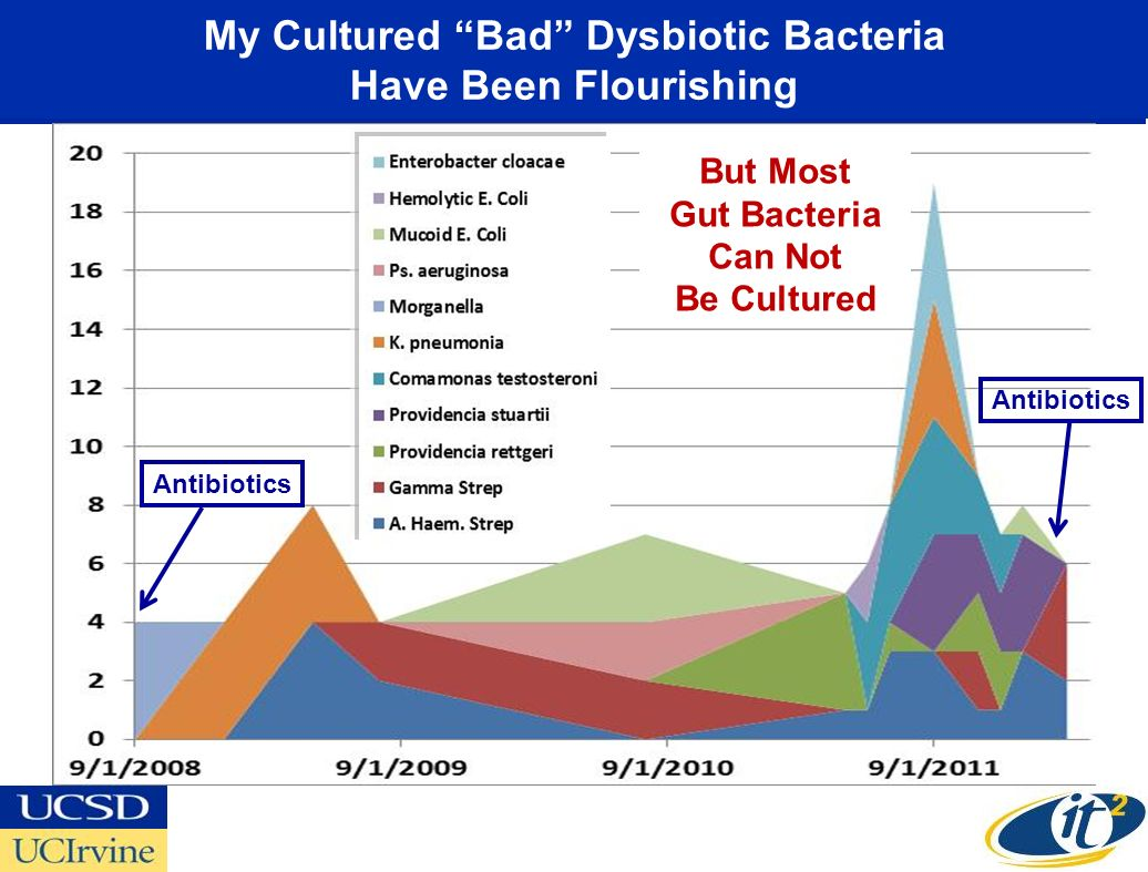 My Cultured Bad Dysbiotic Bacteria Have Been Flourishing But Most Gut Bacteria Can Not Be Cultured Antibiotics