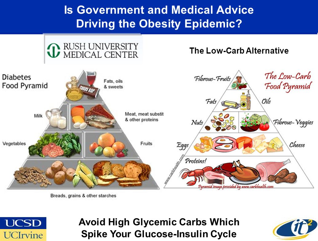 Is Government and Medical Advice Driving the Obesity Epidemic.
