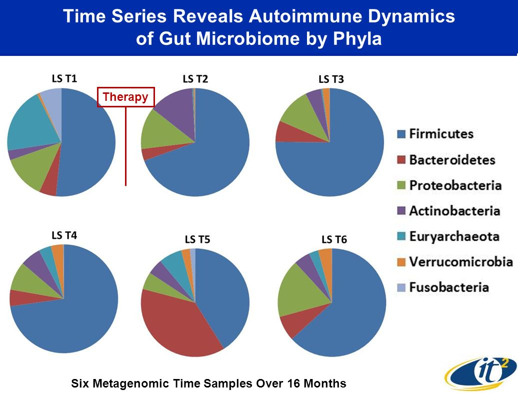 Time Series Reveals Autoimmune Dynamics of Gut Microbiome by Phyla Therapy Six Metagenomic Time Samples Over 16 Months
