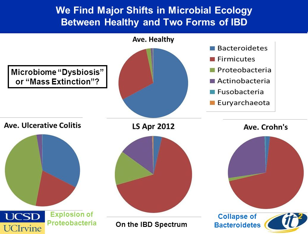 We Find Major Shifts in Microbial Ecology Between Healthy and Two Forms of IBD Collapse of Bacteroidetes Explosion of Proteobacteria Microbiome Dysbiosis or Mass Extinction.