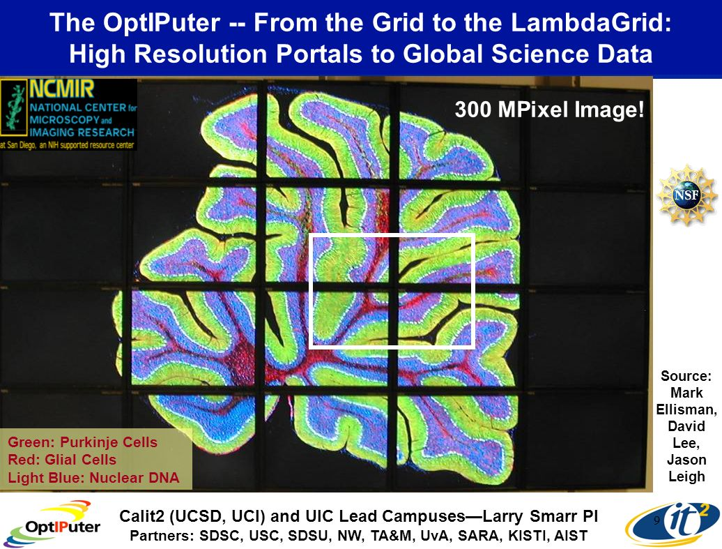 9 The OptIPuter -- From the Grid to the LambdaGrid: High Resolution Portals to Global Science Data Green: Purkinje Cells Red: Glial Cells Light Blue: Nuclear DNA Source: Mark Ellisman, David Lee, Jason Leigh 300 MPixel Image.