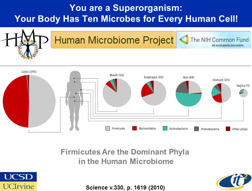 You are a Superorganism: Your Body Has Ten Microbes for Every Human Cell.