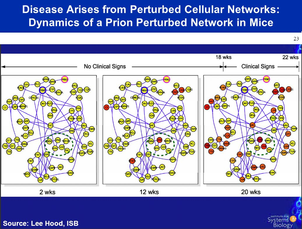 Disease Arises from Perturbed Cellular Networks: Dynamics of a Prion Perturbed Network in Mice Source: Lee Hood, ISB 23