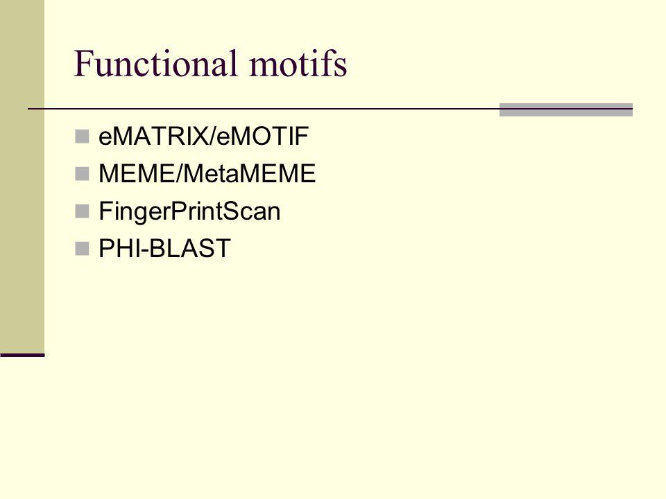 Functional motifs eMATRIX/eMOTIF MEME/MetaMEME FingerPrintScan PHI-BLAST