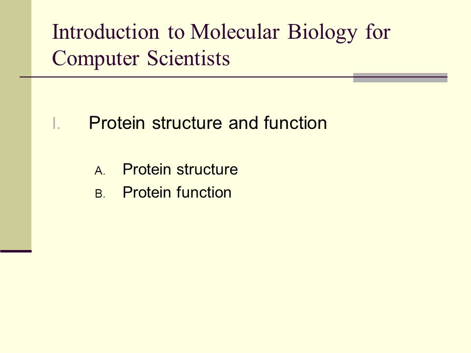 Protein structure – Amino acids An amino acid has four functional groups attached to a central carbon atom An amino group A carboxyl group A hydrogen atom A variable side chain (R group) Proteins use L isomers of amino acids