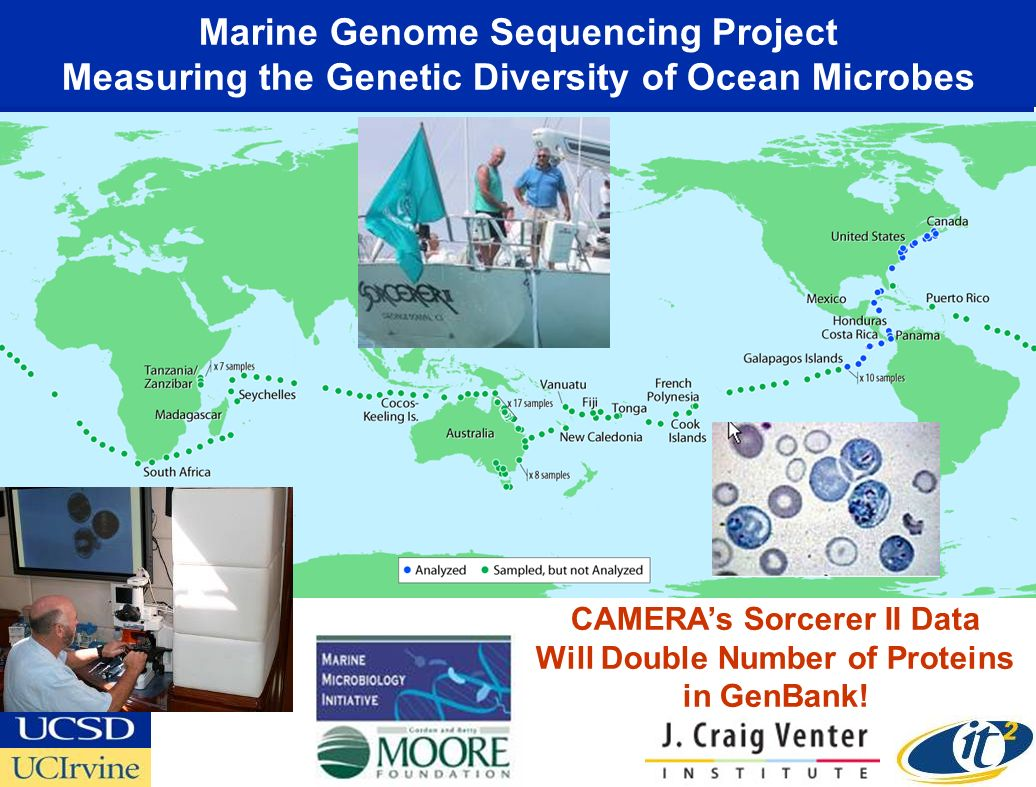 Marine Genome Sequencing Project Measuring the Genetic Diversity of Ocean Microbes CAMERAs Sorcerer II Data Will Double Number of Proteins in GenBank!