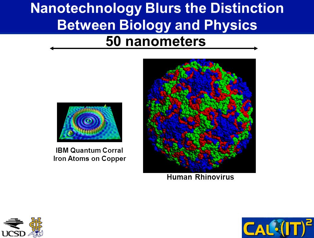 Nanotechnology Blurs the Distinction Between Biology and Physics 50 nanometers Human Rhinovirus IBM Quantum Corral Iron Atoms on Copper
