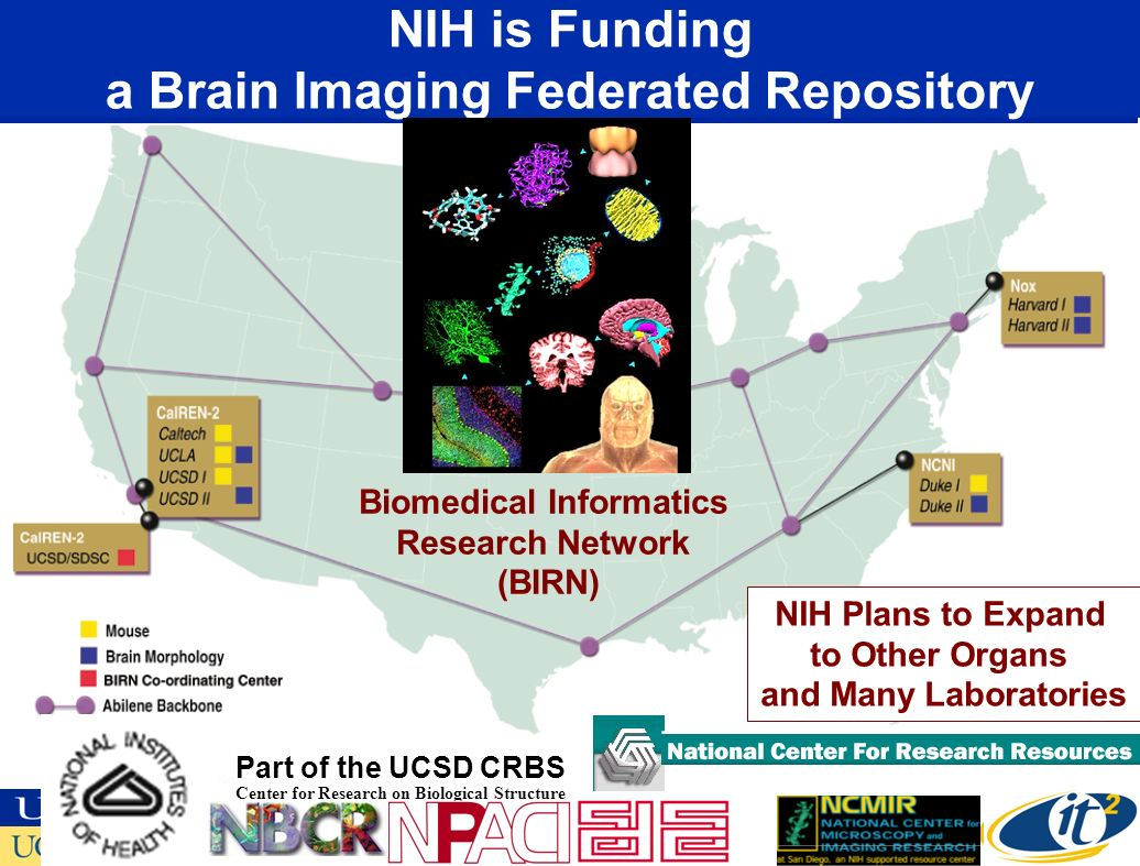 NIH is Funding a Brain Imaging Federated Repository National Partnership for Advanced Computational Infrastructure Part of the UCSD CRBS Center for Research on Biological Structure Biomedical Informatics Research Network (BIRN) NIH Plans to Expand to Other Organs and Many Laboratories