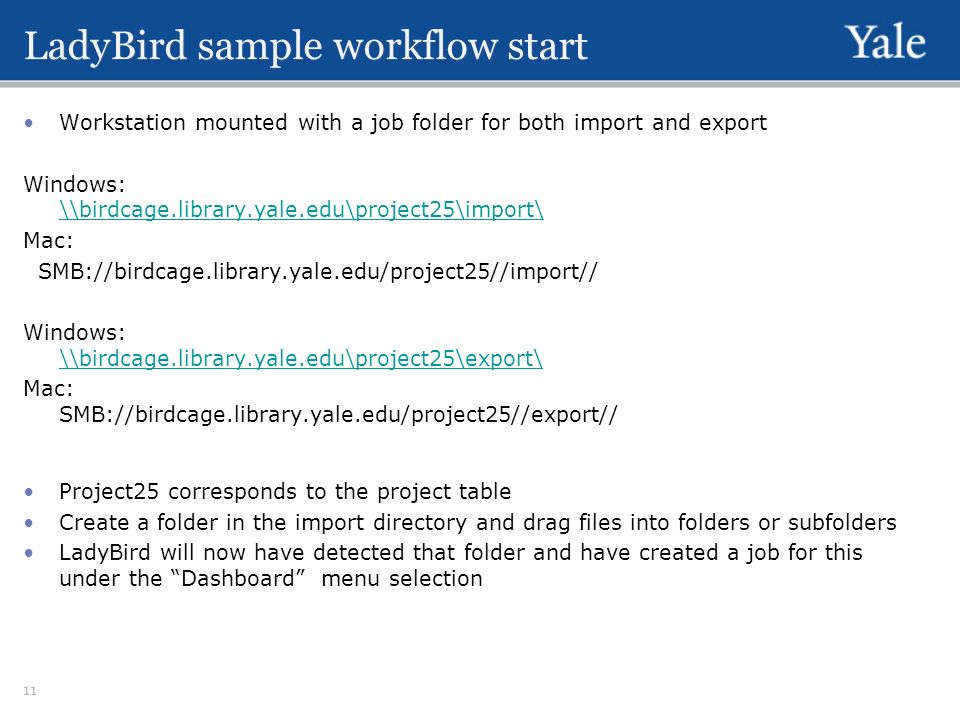 LadyBird sample workflow start Workstation mounted with a job folder for both import and export Windows: \\birdcage.library.yale.edu\project25\import\