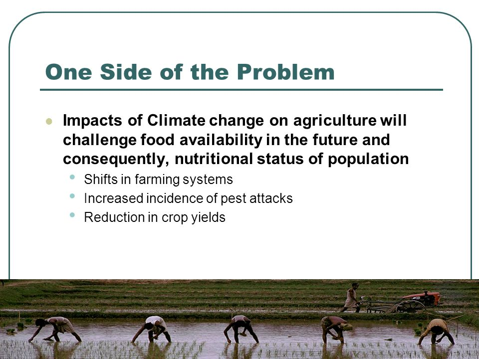 One Side of the Problem Impacts of Climate change on agriculture will challenge food availability in the future and consequently, nutritional status of population Shifts in farming systems Increased incidence of pest attacks Reduction in crop yields