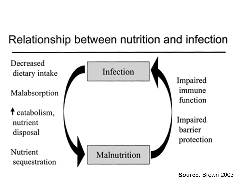 Relationship between nutriton and infection Source: Brown 2003