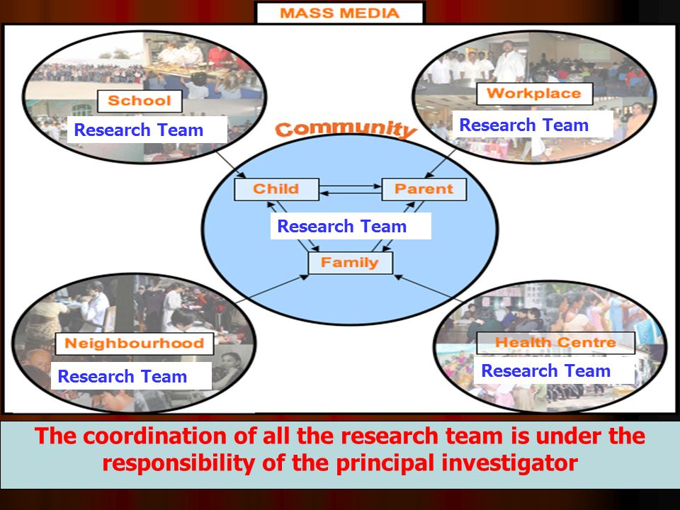 The coordination of all the research team is under the responsibility of the principal investigator Research Team