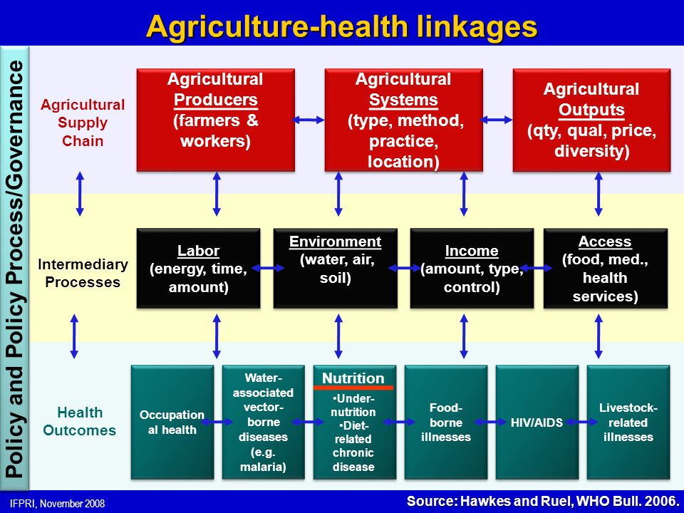 IFPRI, November 2008 Agriculture-health linkages Agricultural Producers (farmers & workers) Agricultural Producers (farmers & workers) Occupation al health Agricultural Systems (type, method, practice, location) Agricultural Systems (type, method, practice, location) Agricultural Outputs (qty, qual, price, diversity) Agricultural Outputs (qty, qual, price, diversity) Labor (energy, time, amount) Labor (energy, time, amount) Environment (water, air, soil) Environment (water, air, soil) Income (amount, type, control) Income (amount, type, control) Access (food, med., health services) Access (food, med., health services) Water- associated vector- borne diseases (e.g.
