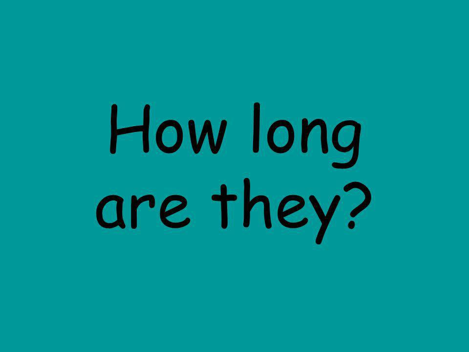How long are they?