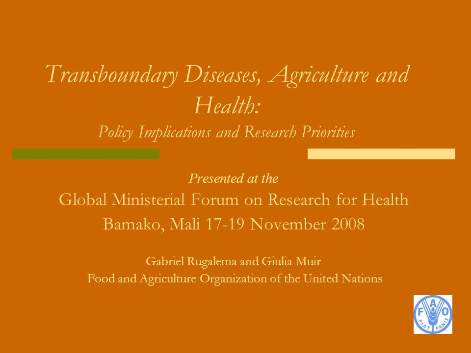 Presented at the Global Ministerial Forum on Research for Health Bamako, Mali 17-19 November 2008 Gabriel Rugalema and Giulia Muir Food and Agricultur