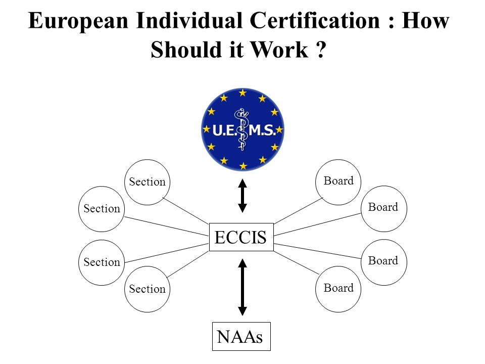 European Individual Certification : How Should it Work ? NAAs ECCIS Section Board