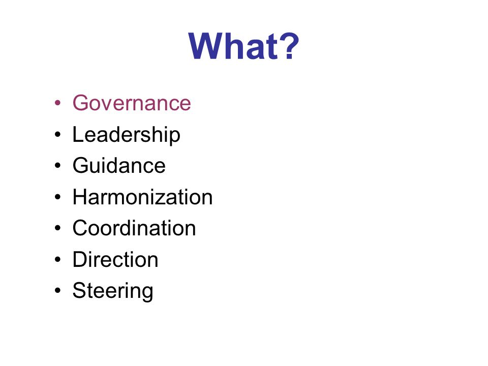 What? Governance Leadership Guidance Harmonization Coordination Direction Steering