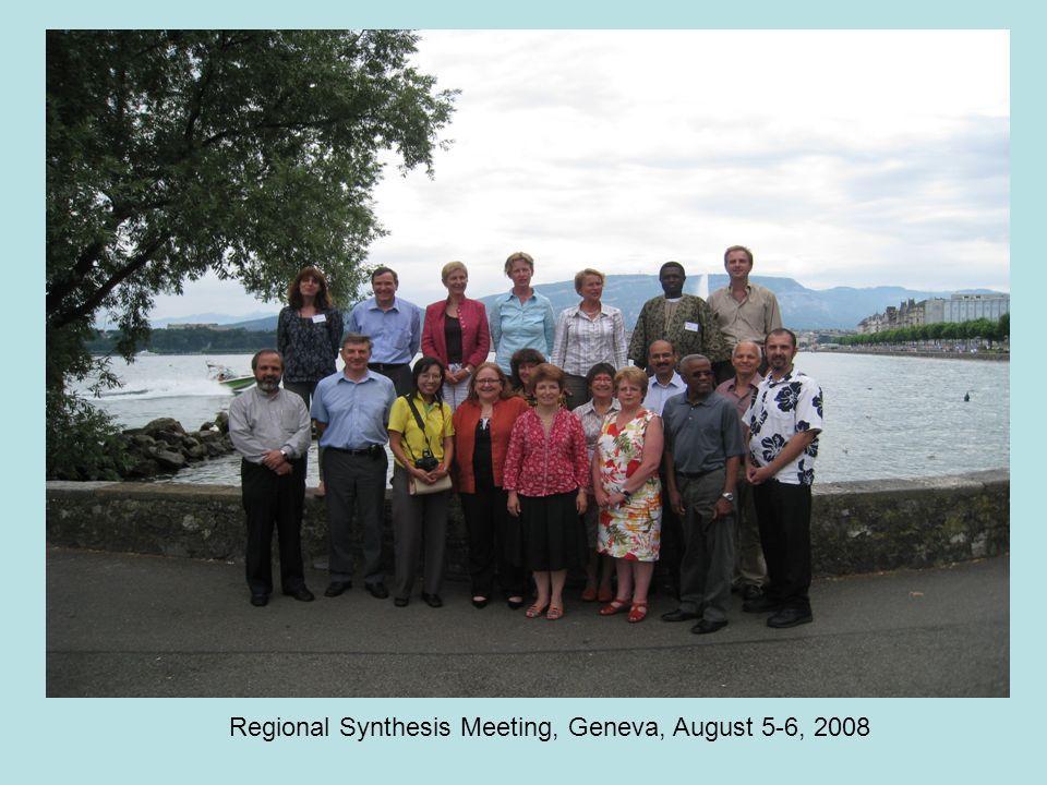 Regional Synthesis Meeting, Geneva, August 5-6, 2008