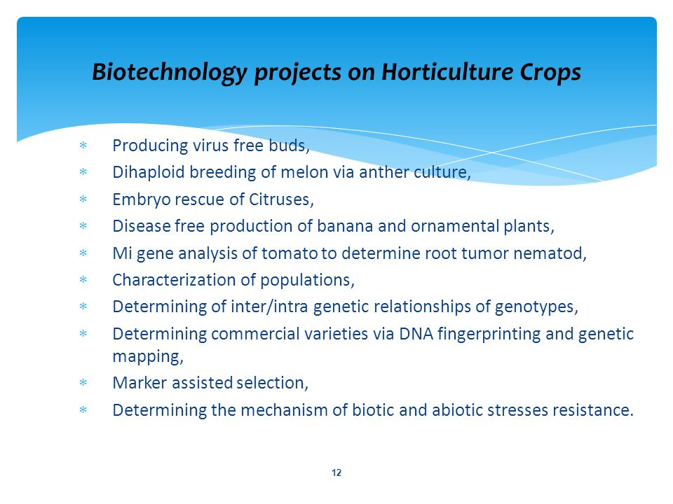 Producing virus free buds, Dihaploid breeding of melon via anther culture, Embryo rescue of Citruses, Disease free production of banana and ornamental